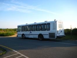 Island Bus at Gay Head